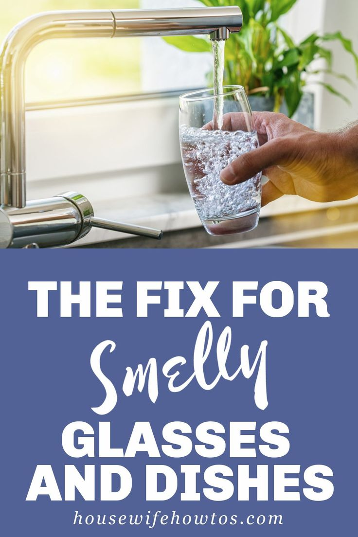 how to get rid of fishy smell off a dog