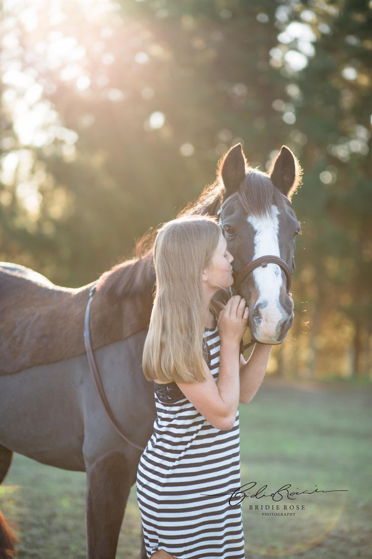 Equine Portrait Photography   New Zealand   Bridie Rose Photography