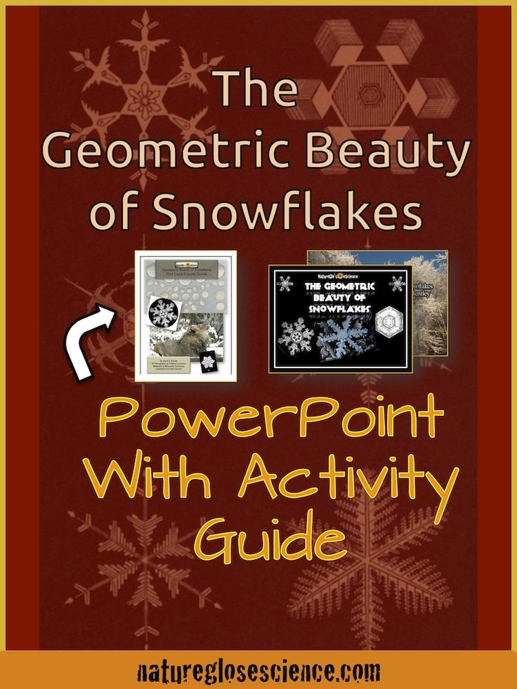 Snowflake math, winter arts and crafts for kids, how many sides do snowflakes have, snowflake math worksheets, snowflakes and math, snowflake bentley activities, wilson snowflake bentley, wilson snowflake bentley, snowflake bentley video, snowflake bentley biography, who was snowflake bentley, christmas maths activities