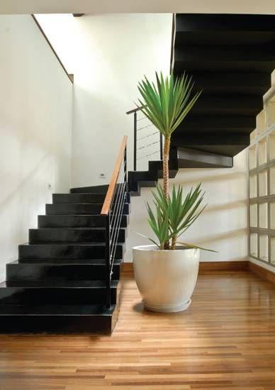 A escada de granilite preto leva do térreo às salas no primeiro pavimento. ...