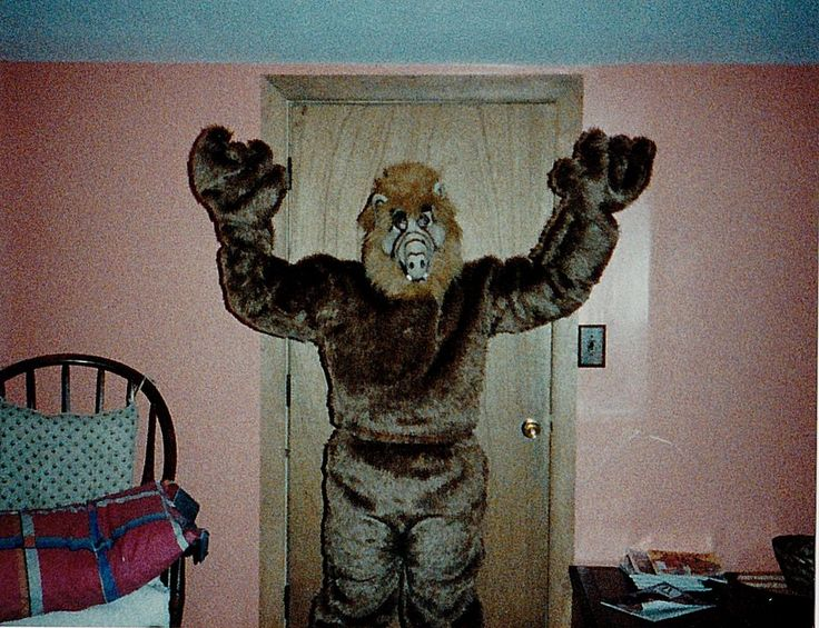 old vintage photograph person wearing cool alf costume on halloween - Alf Halloween Episode