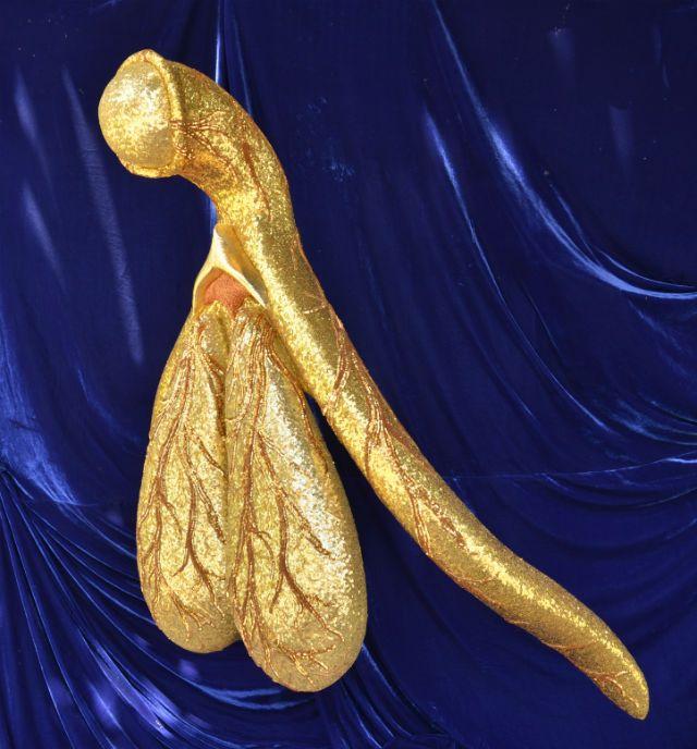 Glitoris, un clítoris gigante y dorado
