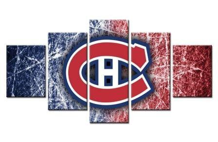 Montreal Canadiens Professional Ice Hockey Team (Ice Rink)