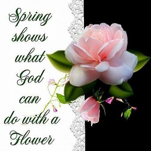 17 Best Happy Spring Images On Pinterest