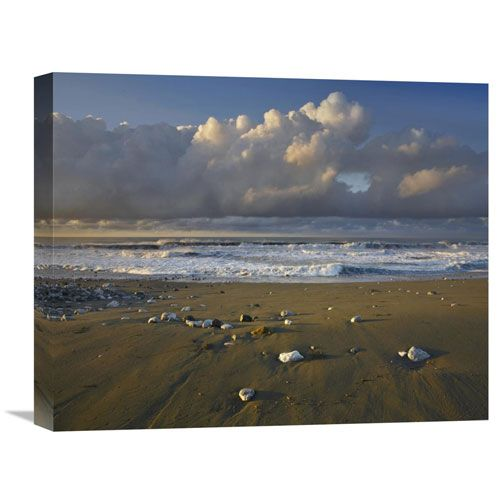 Beach And Waves, Corcovado National Park, Costa Rica By Tim Fitzharris, 16 X 20-Inch Wall Art
