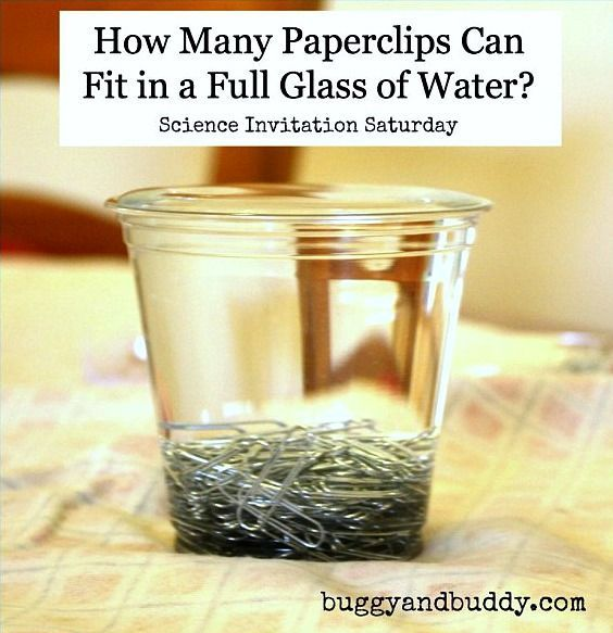 Exploring the Surface Tension of Water with Paperclips