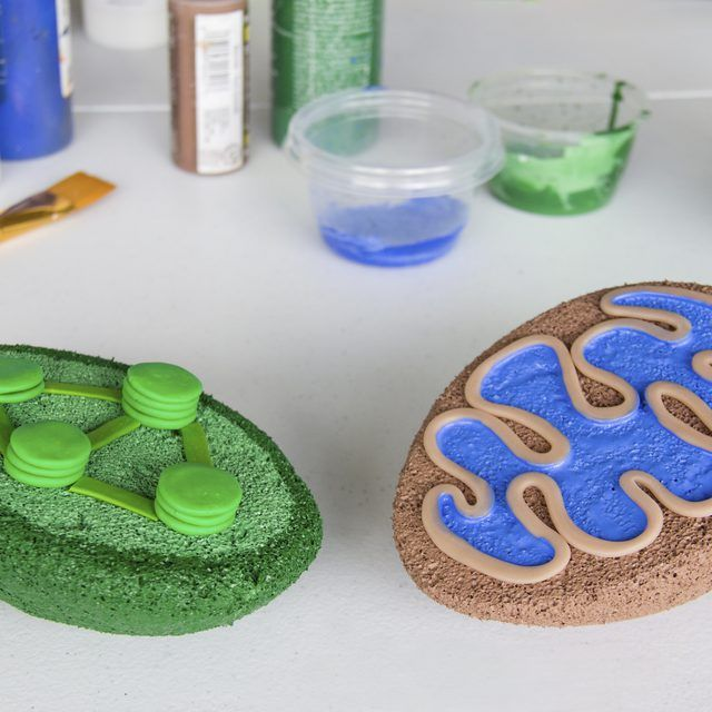 how to build a cell model