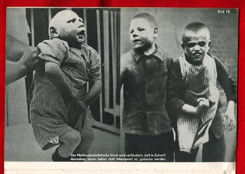 very rare original SS photo pamphlet against Jews, mentally ill and pro Lebensborn and Aryan