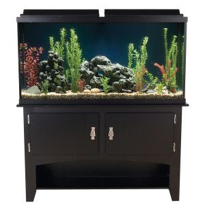 Black friday sale at petsmart includes 60 gallon for Petsmart fish tank stand