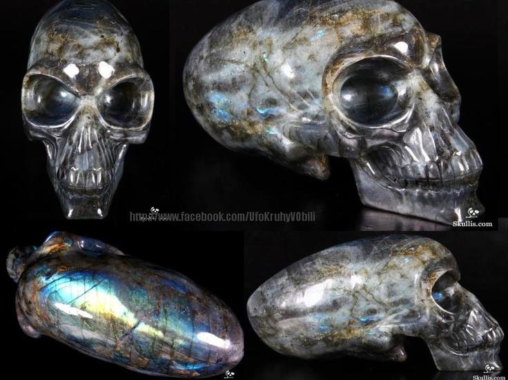 skull  www.pc-homework.info