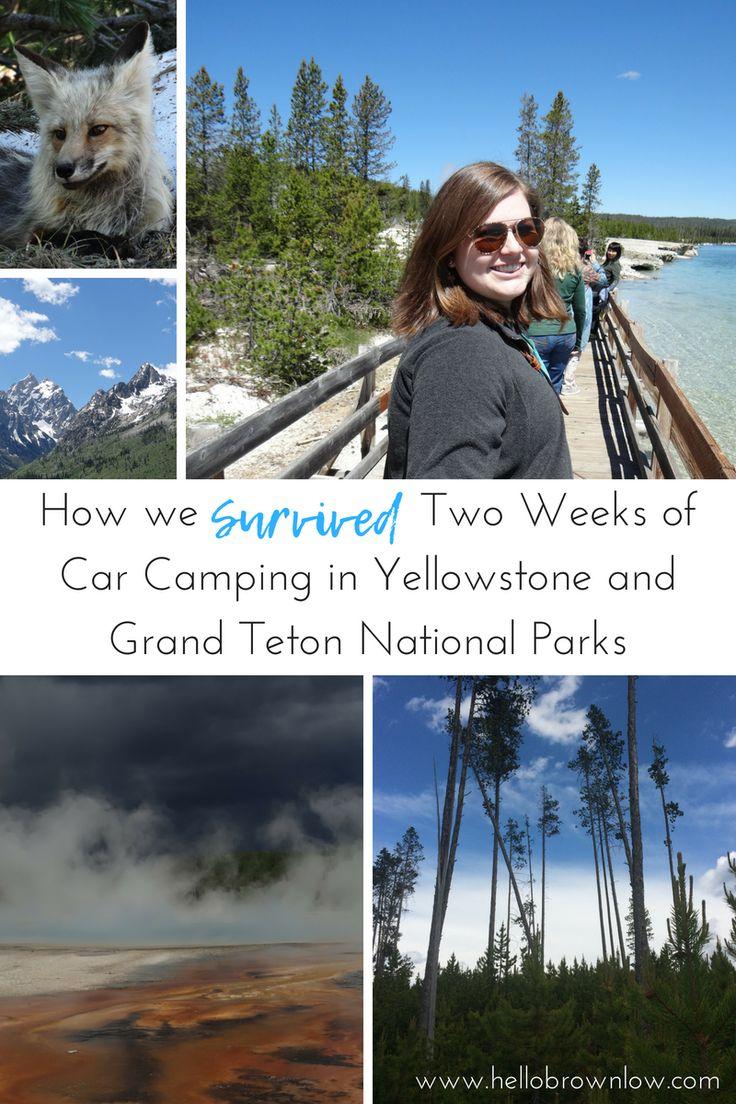 Comment avons-nous passé avec succès deux semaines de camping en voiture dans les parcs nationaux de Yellowstone et de Grand Teton – 2e partie   – Travel Bug