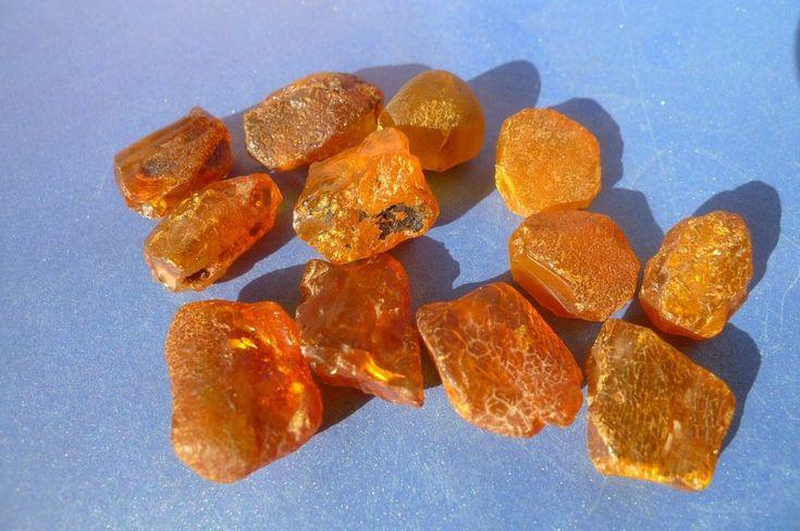 c2 Natural Cognac Honey Baltic Amber loose rough gem stone 12psc 16.8gr