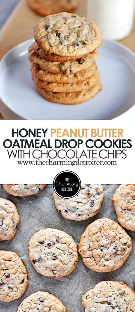 Honey Peanut Butter Oatmeal Drop Cookies: The only chewy cookie you'll ever need, with mini chocolate chips too!