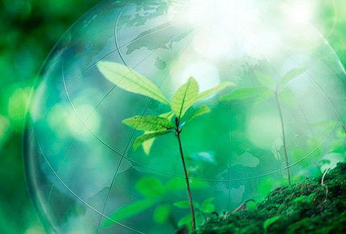 Нравственность и гармония – главные составляющие жизни, исполненной мира и воздержанности. Следующие цитаты из Корана передают, в чем заключается сущность экологического Ислама. http://islam.com.ua/ekologiya/19241-koran-ob-okruzhayushchej-srede-i-vypolnimyj-plan-dejstvij