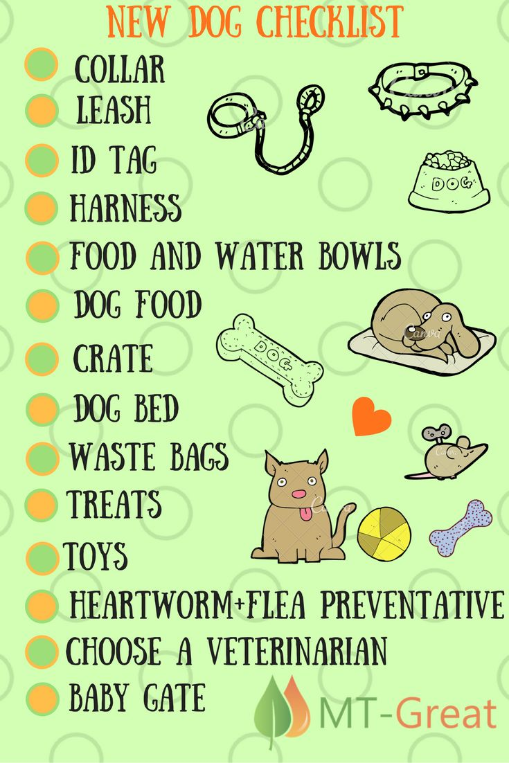 Here is the checklist for a new puppy! Visit our website - www.mt-great.com #dog #pets #lovemydog #dogs #petcarseat #dogcarseat #petcarseatcover #dogcarseatcover #carcover #petcarseatprotector #pet #travel #puppy #yorkshire #yorkshirelove #yorklove #doglover #doglove #doglife #dogslife #lovepuppies #adorable #puppies #mypets #mydog #inspiredbypets #beggintime #mydogiscutest #funnypictures #petoftheday #puppylove #puppydog #dogoftheday