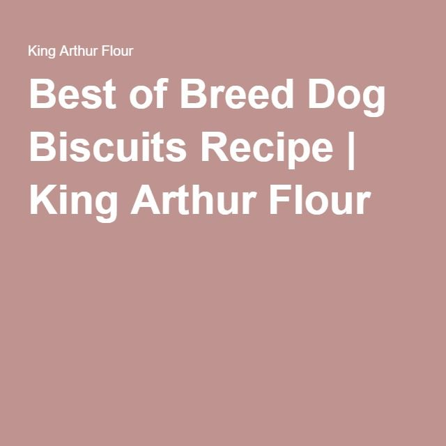 Best of Breed Dog Biscuits Recipe | King Arthur Flour