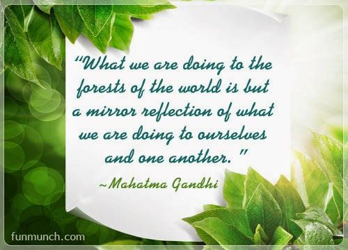 World Environment Day: What we are doing to the forests of the world is but, a mirror reflection of what we are doing  to ourselves and one another. MAHATMA GANDHI