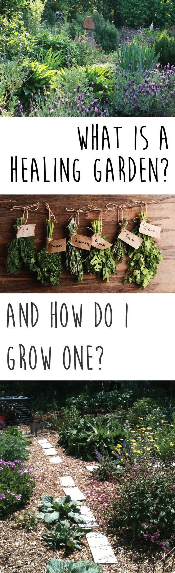 How to grow a healing garden