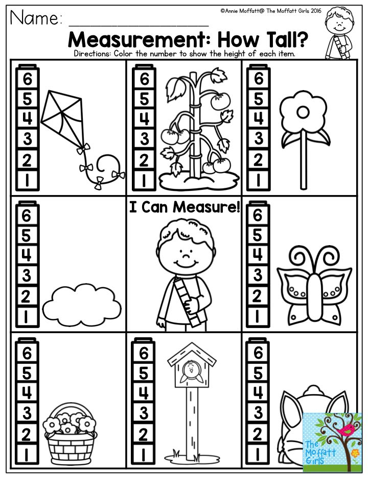 Measurement: How Tall? A simple measuring activity for Preschool.  There are plenty of other basic concepts taught in the NO PREP Packet for May! Come check them all out!