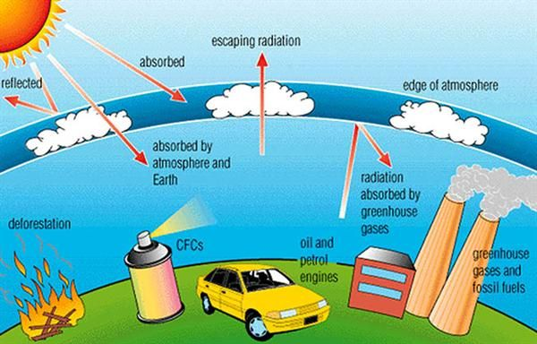 Allows students to read about air pollution and its significance for humans and other living things. -RN