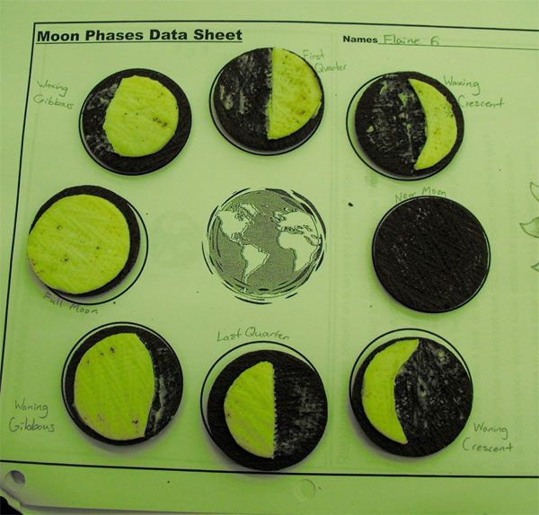 4 experimentos caseros para niños ¡con galletas! Los experimentos caseros para niños son una divertida manera de aprender. Hoy te mostramos 4 experimentos caseros para niños con galletas.