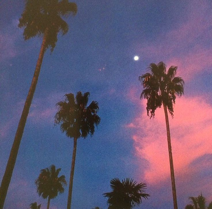 pinterest Aesthetic wallpapers, Vaporwave