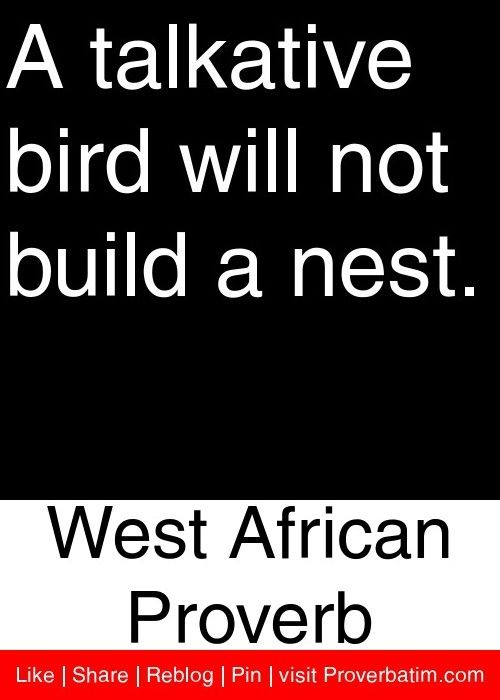 See more HERE: https://www.sunfrog.com/Pets/Crazy-Bird-Lady-4-9471-Charcoal-48011235-Hoodie.html?53507  A talkative bird will not build a nest. - West African Proverb #proverbs #quotes
