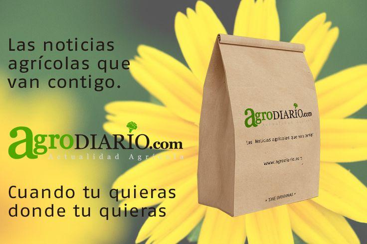 www.agrodiario.com las noticias agrícolas que van contigo