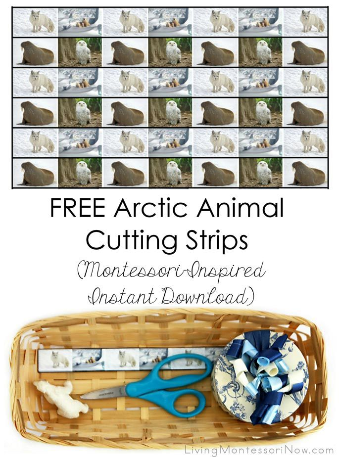 These Arctic animal cutting strips are a Montessori-inspired instant download - super easy to access and prepare.