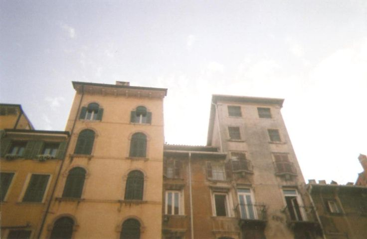 Disposable- Verona