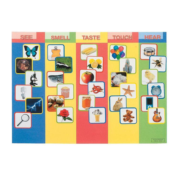 csi senses board game instructions