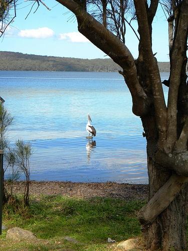 Erowal Bay, Shoalhaven, New South Wales