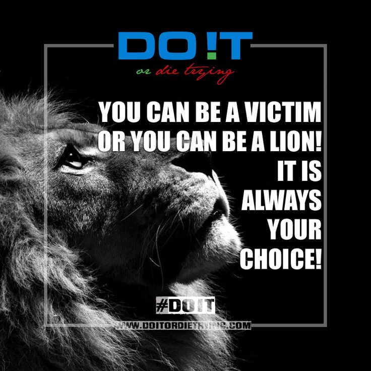 You can be a victim or you can be a lion! It's always your choice! Always have in mind, if a lion lose 5 battles in a raw, you can bet that he will attack 6 and 7 times or as many times as needed until he wins! No one will want to mess with that lion and will never be perceived as a victim. Win or lose, it is always your choice, you can be a victim or you can be a lion!