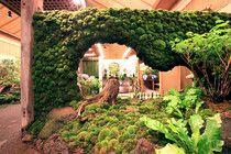 庭園の見所案内/ぼたん と 高麗人参の里 日本庭園【 由志園 】 一覧