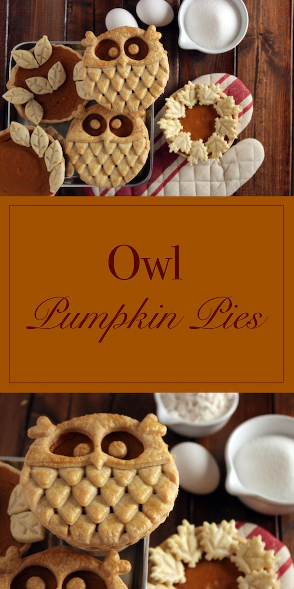 These adorable individual Owl Pumpkin Pies are a hoot! We can't wait to try this recipe for Thanksgiving this year. #Ad