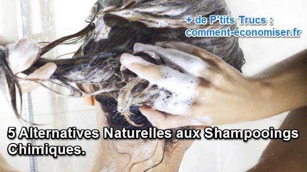 5 Alternatives Naturelles aux Shampooings Chimiques.