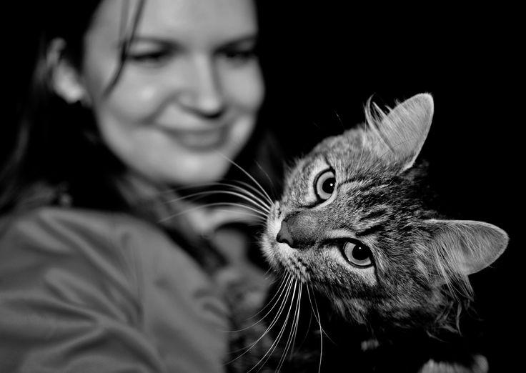 Cat by Miloslav Chum on 500px