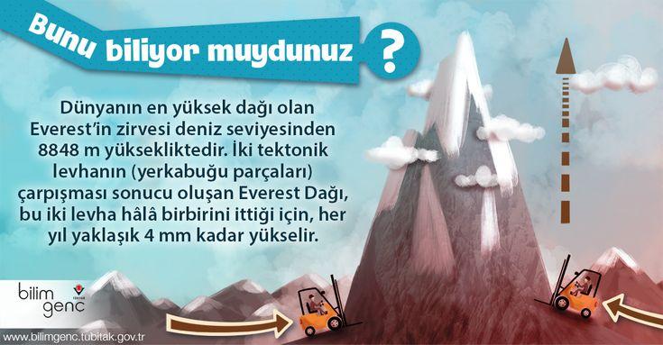 Bunu biliyor muydunuz? Everest Dağı'nın yükselmeye devam ettiğini biliyor muydunuz? #BilimGenç #bilim #Everest #yerkabuğu #tektoniklevha