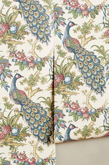 best 25 peacock wallpaper ideas on pinterest