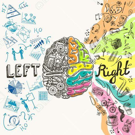 Download Stock Photo   Cerebro ilustracion, Arte cerebro, Dibujos ...