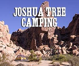 Over flow camping available near Cottonwood Campground. Camping Near Joshua Tree National Park • James Kaiser