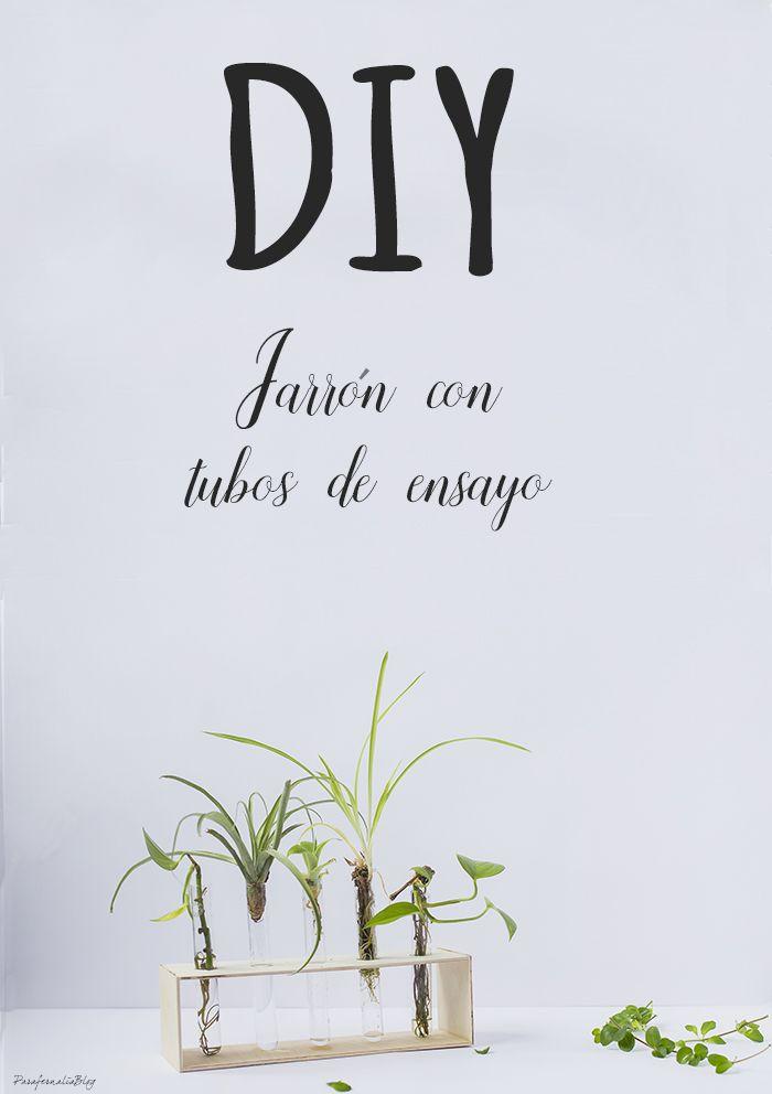 DIY jarrón con tubos de ensayo. Cómo hacer una gradilla portatubos paso a paso para lucir plantas o flores