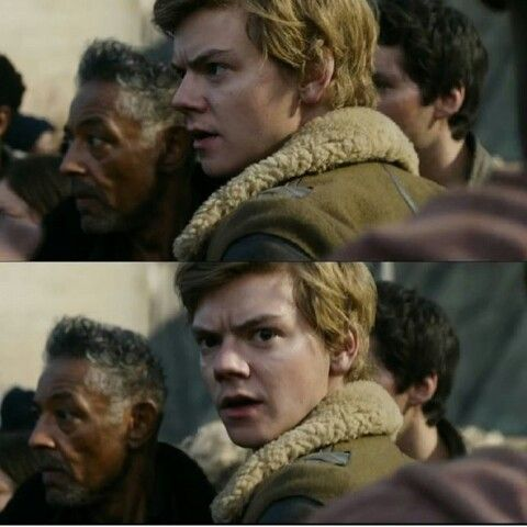 Maze Runner: the Death Cure I don't know if I'm imotionaly ready.