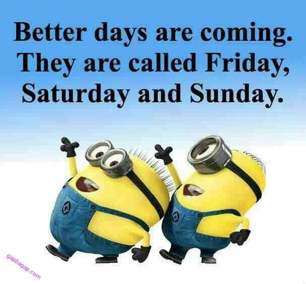 Funny Minion Quotes About Weekends