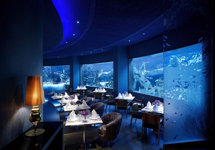 Located in the centre of our 5 acre swimming pool, our signature seafood dishes are complimented with the underwater experience of our four aquariums, with over 3000 varieties of fish living in 400,000 gallons of freshly pumped sea water. #Seafood #SeaRestaurants #Restaurants