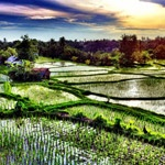 More great Bali Tours, and in Spanish!