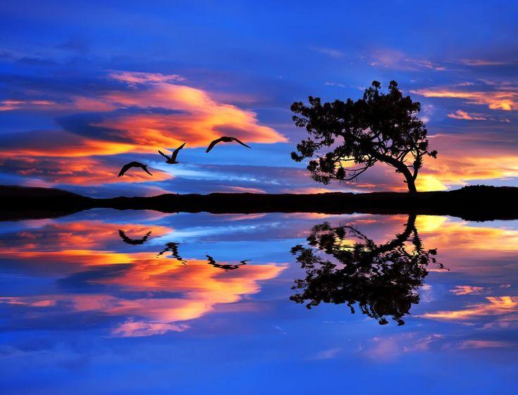 The way life treats you is a merciless mirror image of your attitude toward life. #inspiration #spiritual #spirituality #lifepurpose #purposeoflife #livethelifeyoulove #lawofattraction #loa #awareness #consciousness #powerthoughtsmeditationclub