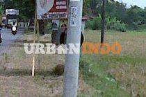 Land for Sale 19 Ha. Lamaran Karawang Timur