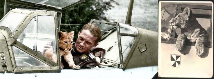 Von Werra, il pilota che sfuggì alla Regina d'Inghilterra - Rivista culturale