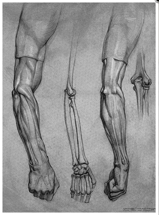 1696 Best Art Academic Drawing Images On Pinterest Draw Art